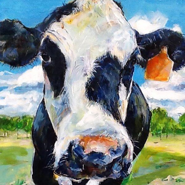 Vibrant Cows